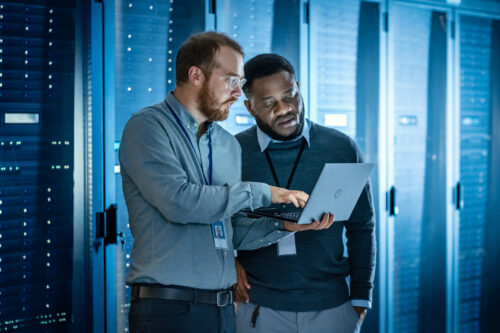 Co-Managed IT: A Flexible Partnership With IT Professionals